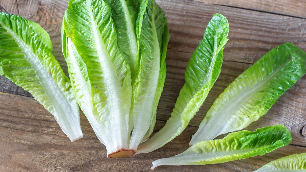 It's Safe to Eat Lettuce Again, If You Must thumbnail