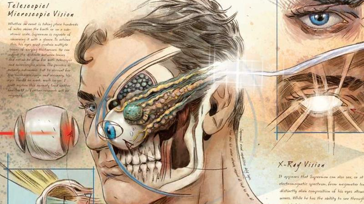 This Book About the Anatomy of DC Heroes and Villains Looks Absolutely Gorgeous