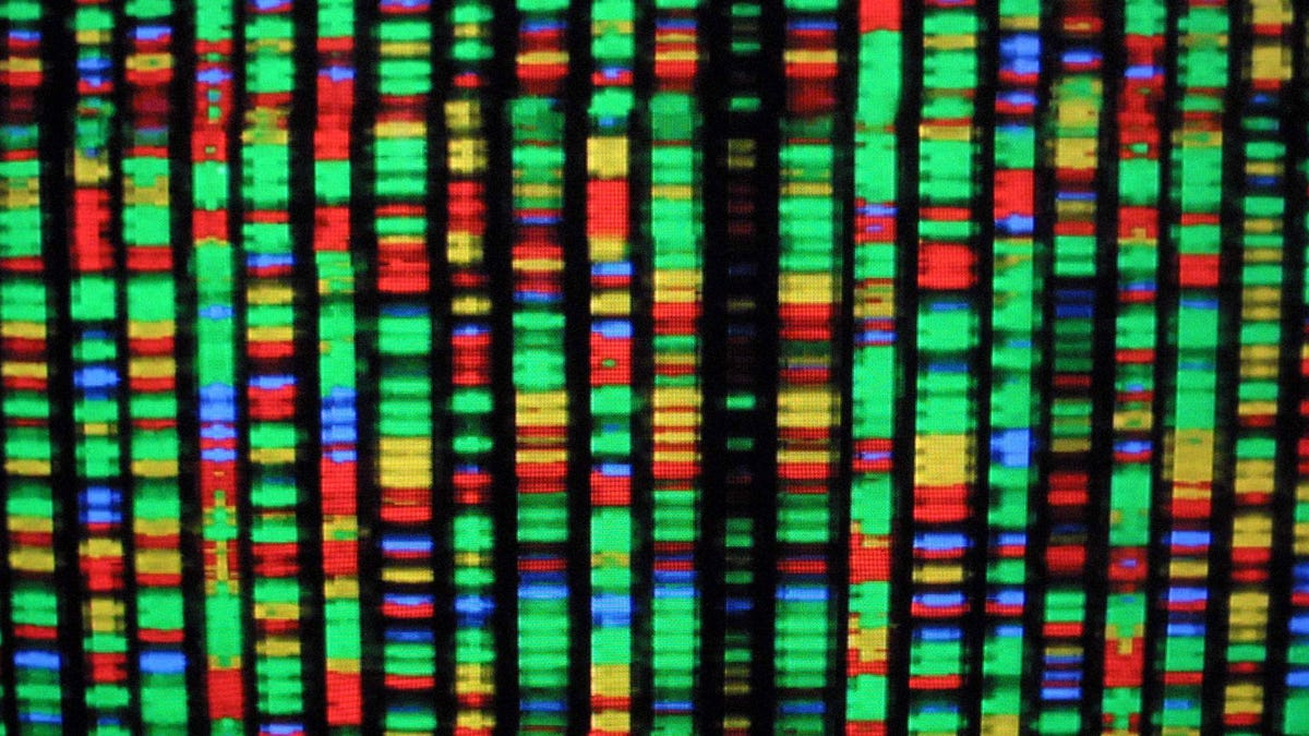 Artificial Human Genomes Could Help Overcome Research Privacy Concerns