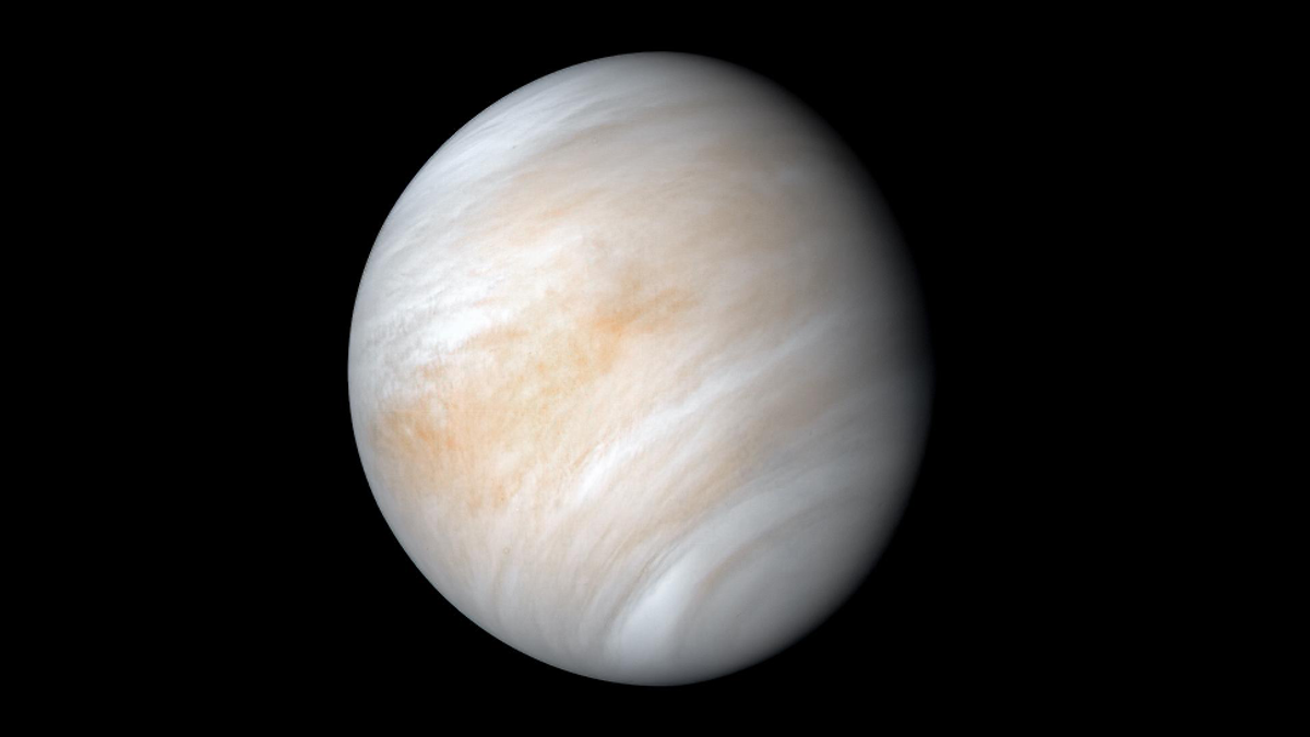 Now That Venus Is a Candidate for Alien Life, What's Next?