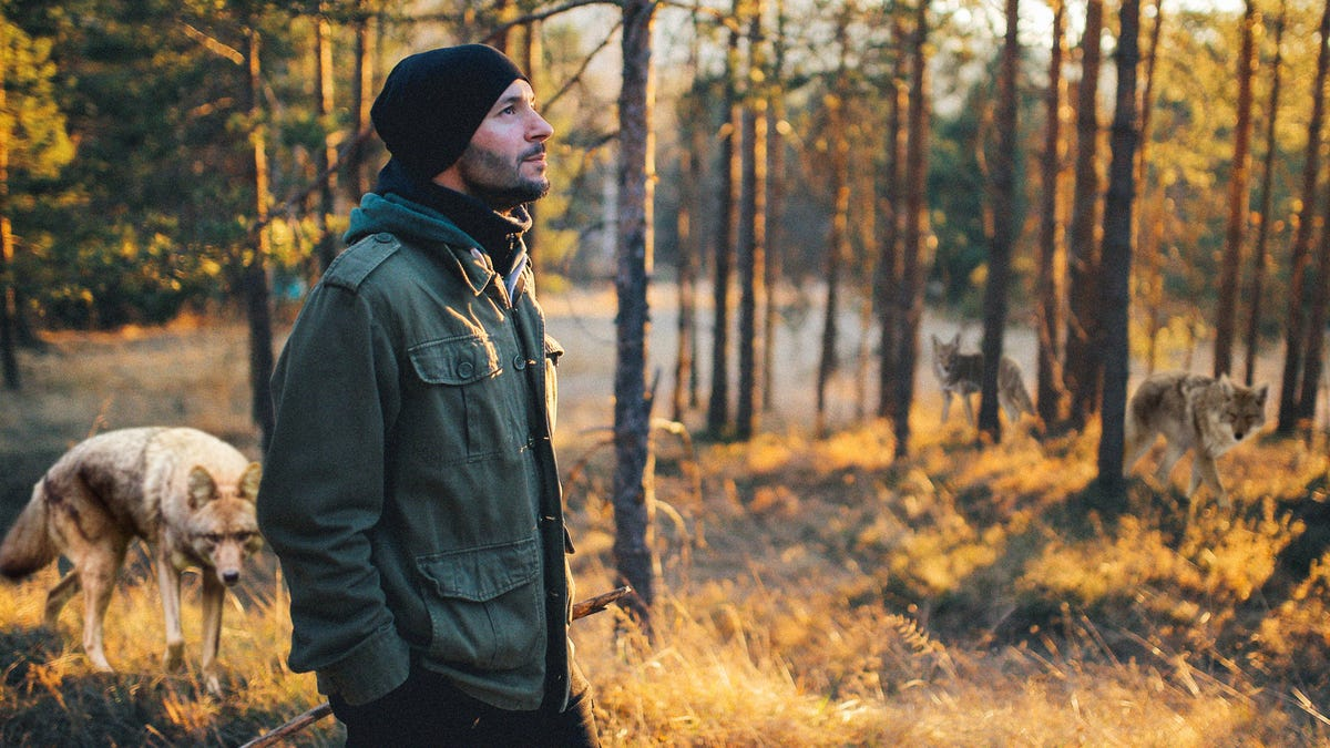 Man Relaxing His Overwhelming Anxiety For Just A Moment Finally Gives Pack Of Coyotes The Opening They Need