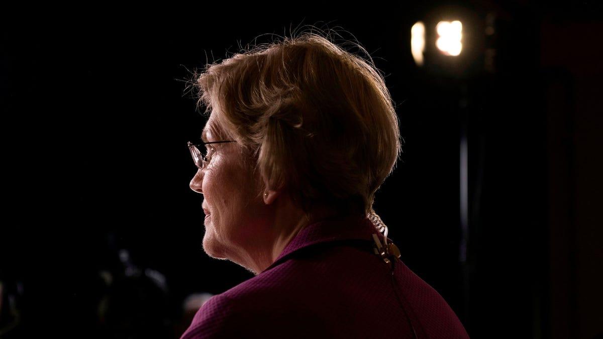 Elizabeth Warren the Fighter Is Back