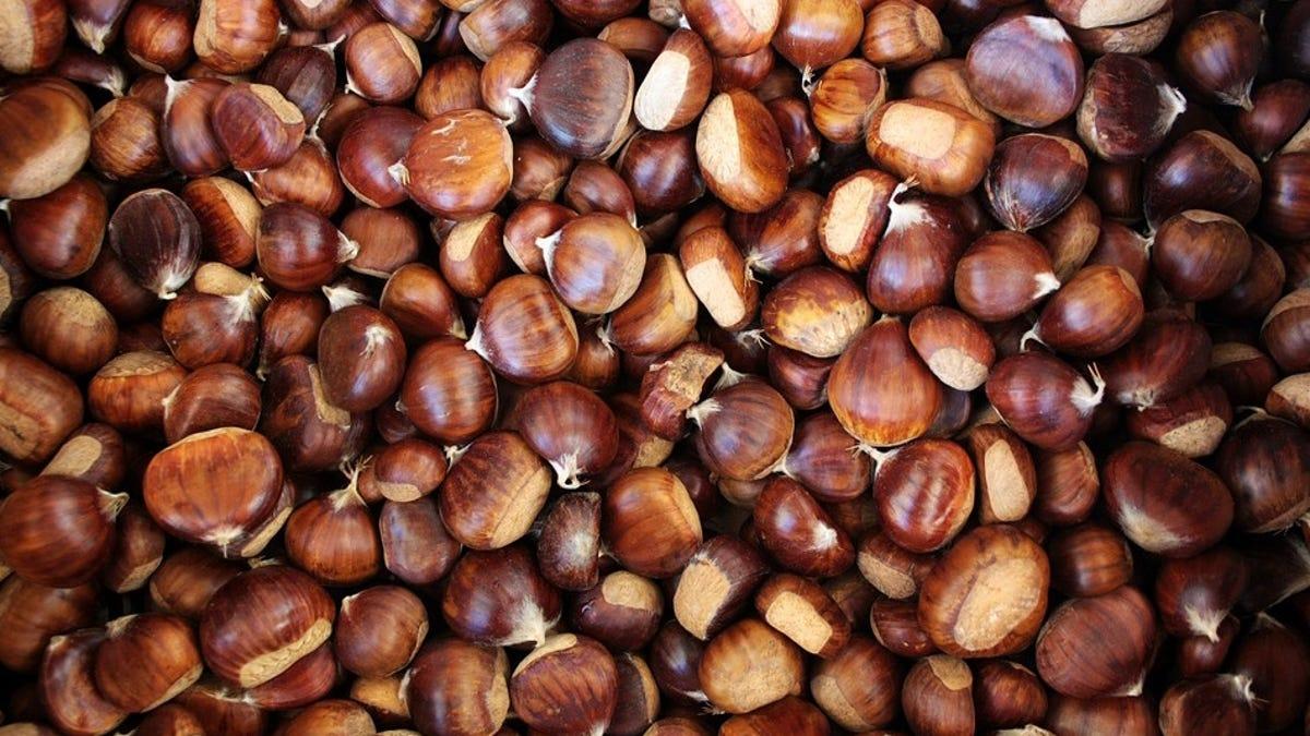 Se come un paquete de castañas sin masticar y el resultado pasa a formar parte de la literatura médica