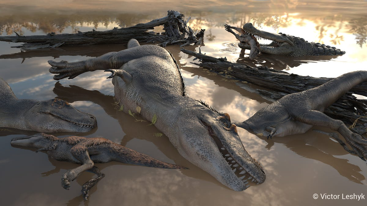 Discovery of Mass Death Site Bolsters Theory That Tyrannosaurs Hunted in Packs