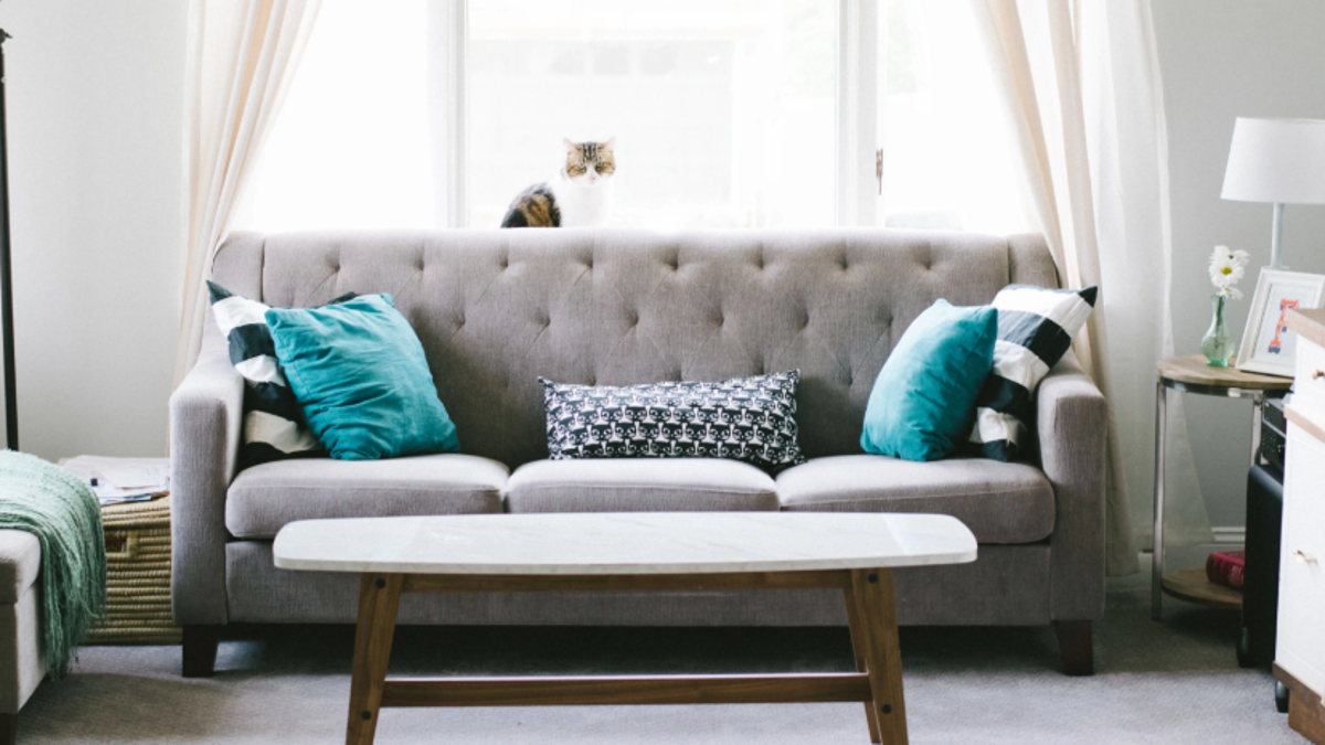 Is Baking Soda the Best Way to Clean Your Couch?