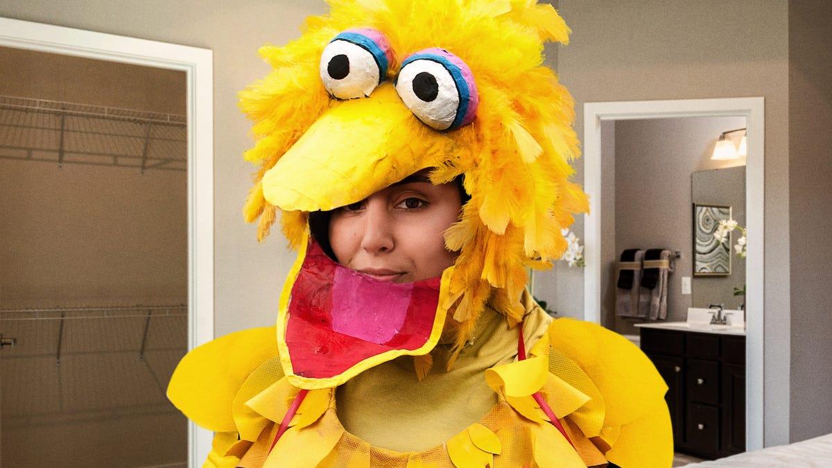 'Just Be Honest If This Looks Good,' Girlfriend Wearing New Big Bird Outfit Asks Panicking Boyfriend