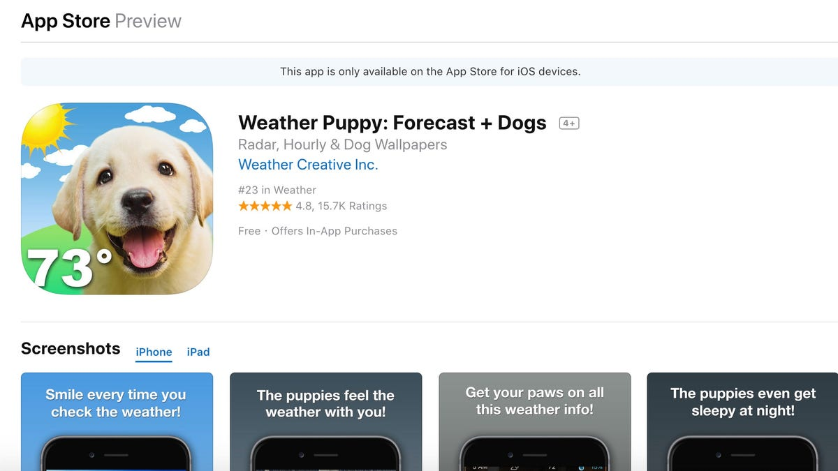 Assorted Reviews Of The Ios Weather Application Weather Puppy Forecast Dogs