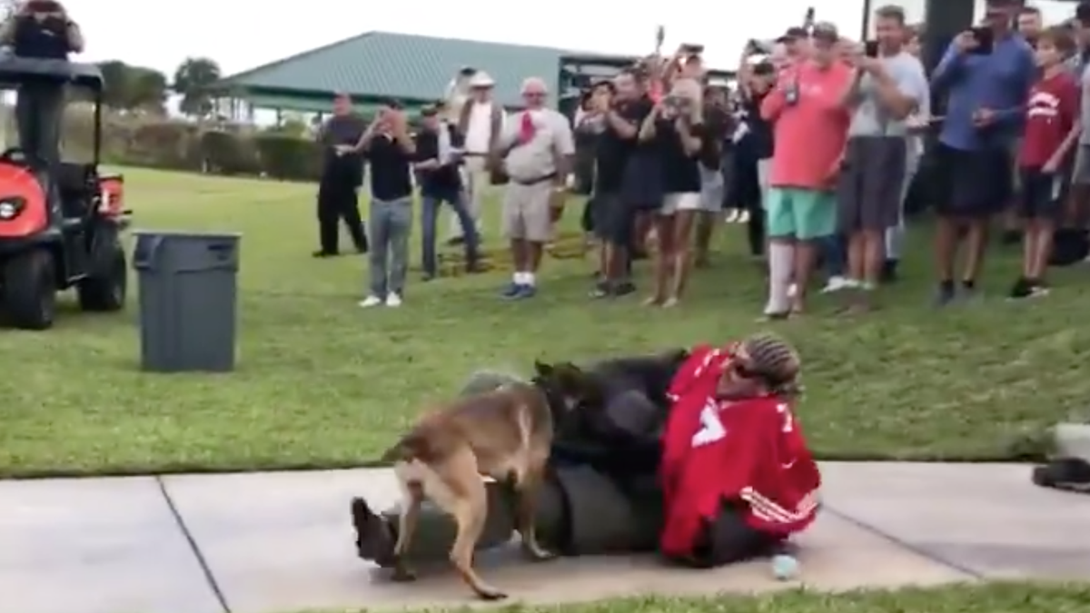 A Navy SEAL Wore Colin Kaepernick's Jersey During A Dog Demonstration - Don't Be Shocked When Those Involved Get Off Scot-free