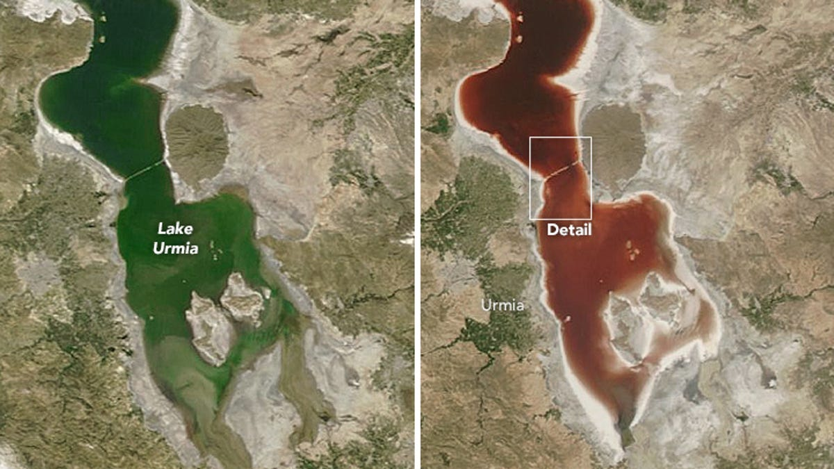 Why Did This Lake Suddenly Turn Blood Red?
