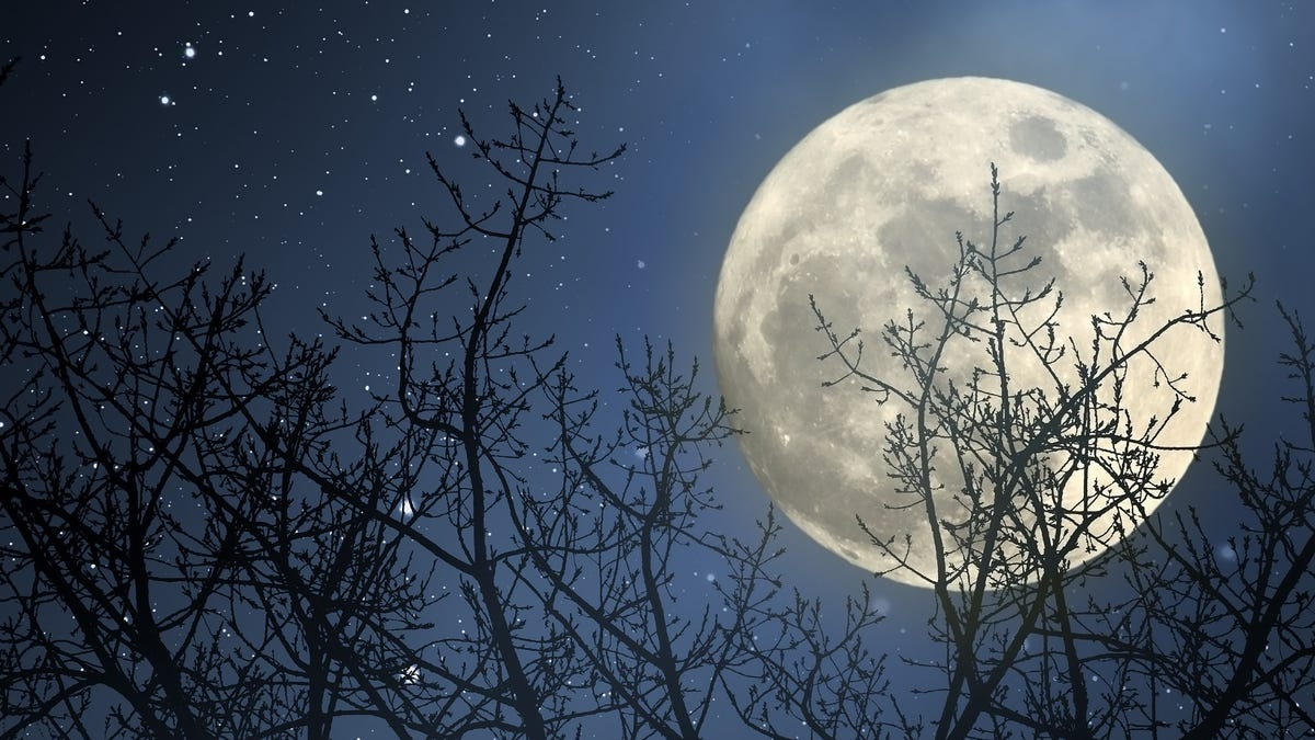 See the Last Full Moon of the Decade Tonight