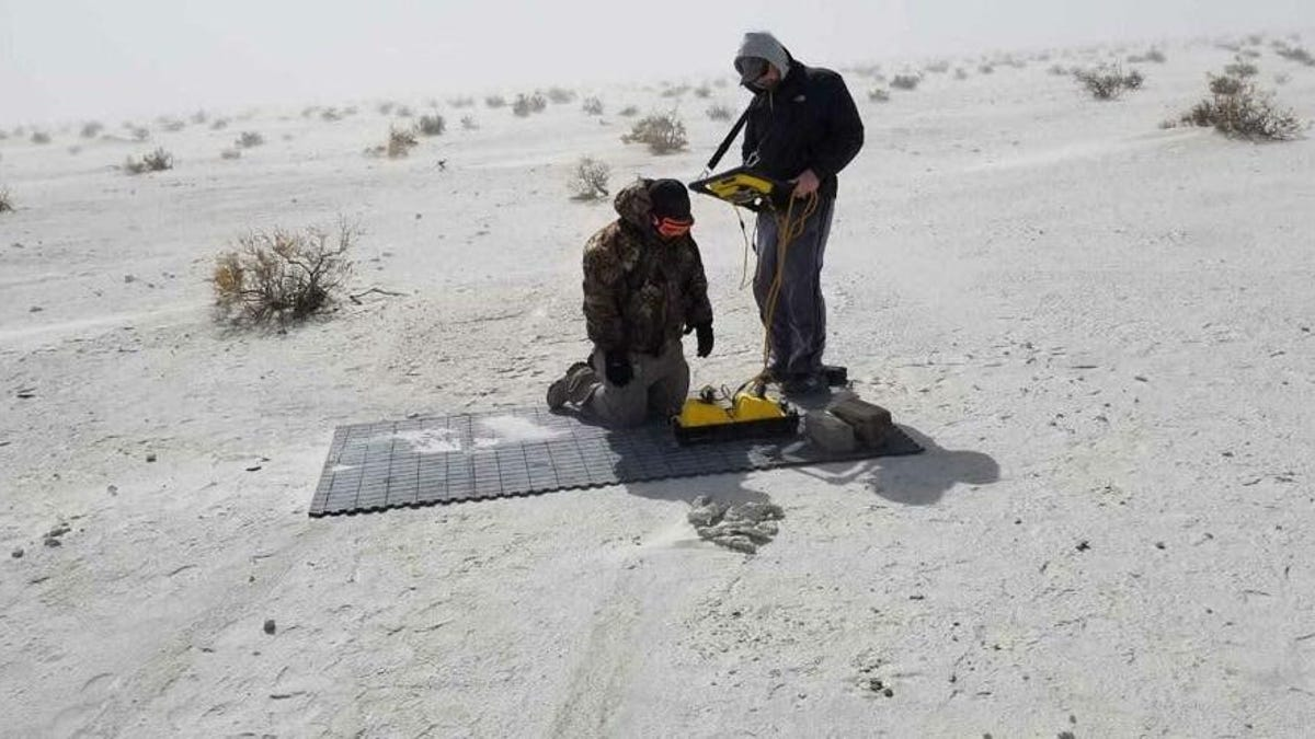 Radar Scans Reveal Ancient Human Footprint Embedded in Mammoth Track