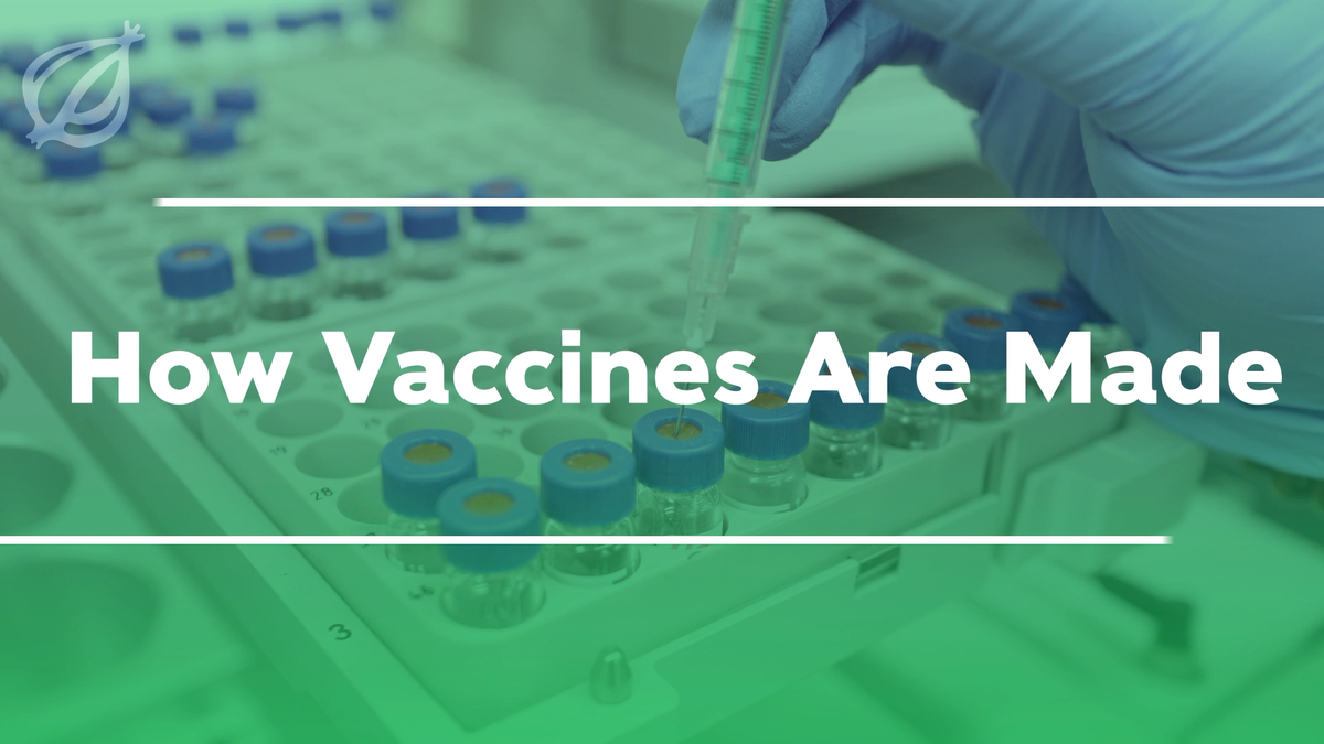 How Vaccines Are Made
