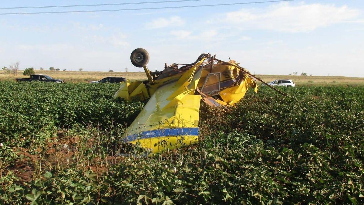 Tai nạn máy bay là phép ẩn dụ hoàn hảo cho các bên tiết lộ giới tính