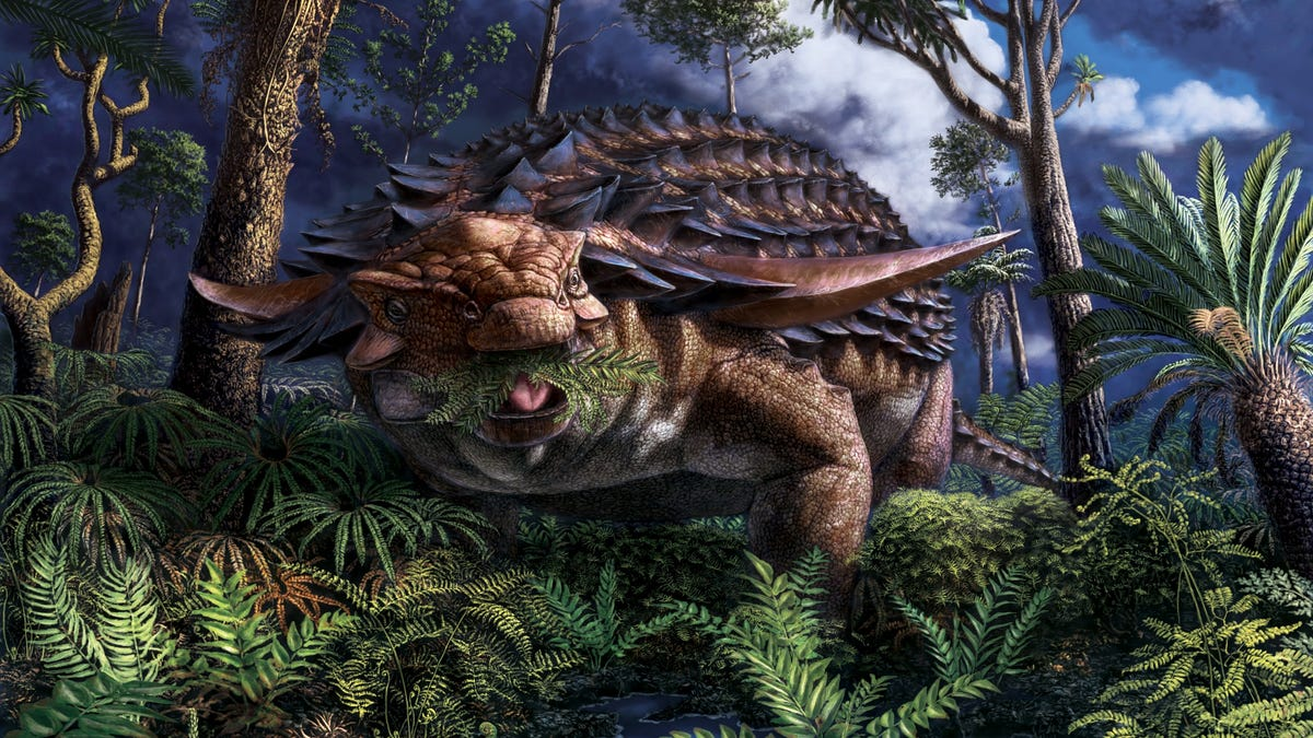 Fossilized Stomach Contents of Armored Dinosaur Reveal Its Last Meal