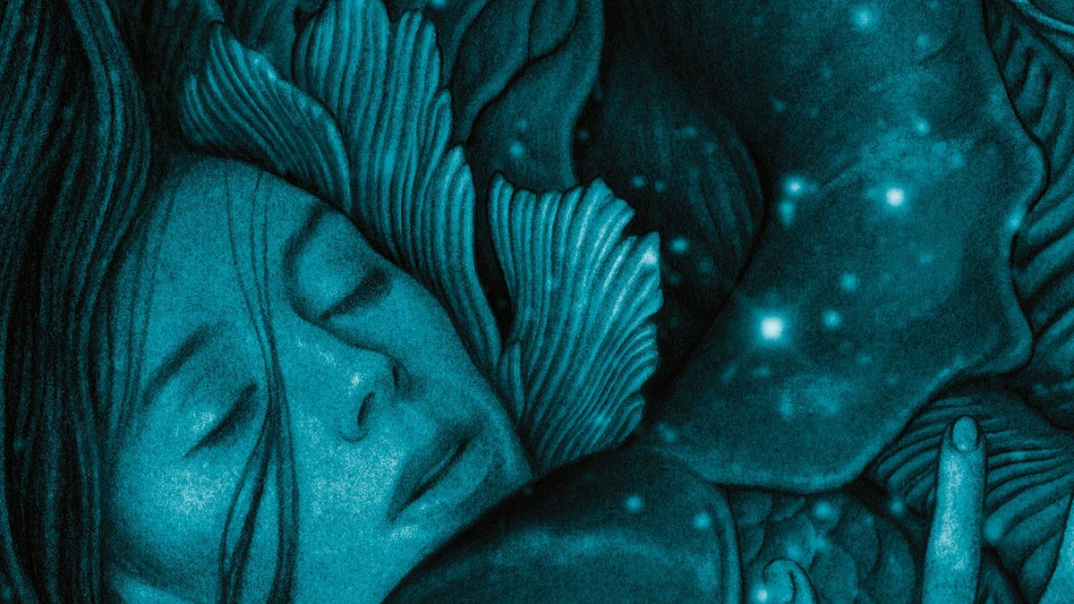 The Shape Of Water Novel Does Much Much More Than Adapt The Movie