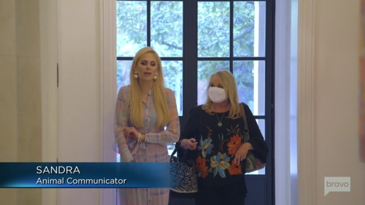 The Real Housewives of Dallas's Brief Encounter With a Pet Psychic Has Left Me Shaken