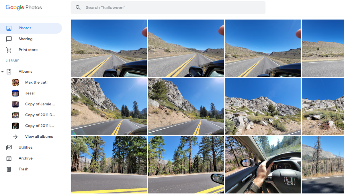 The Best Alternatives to Google Photos