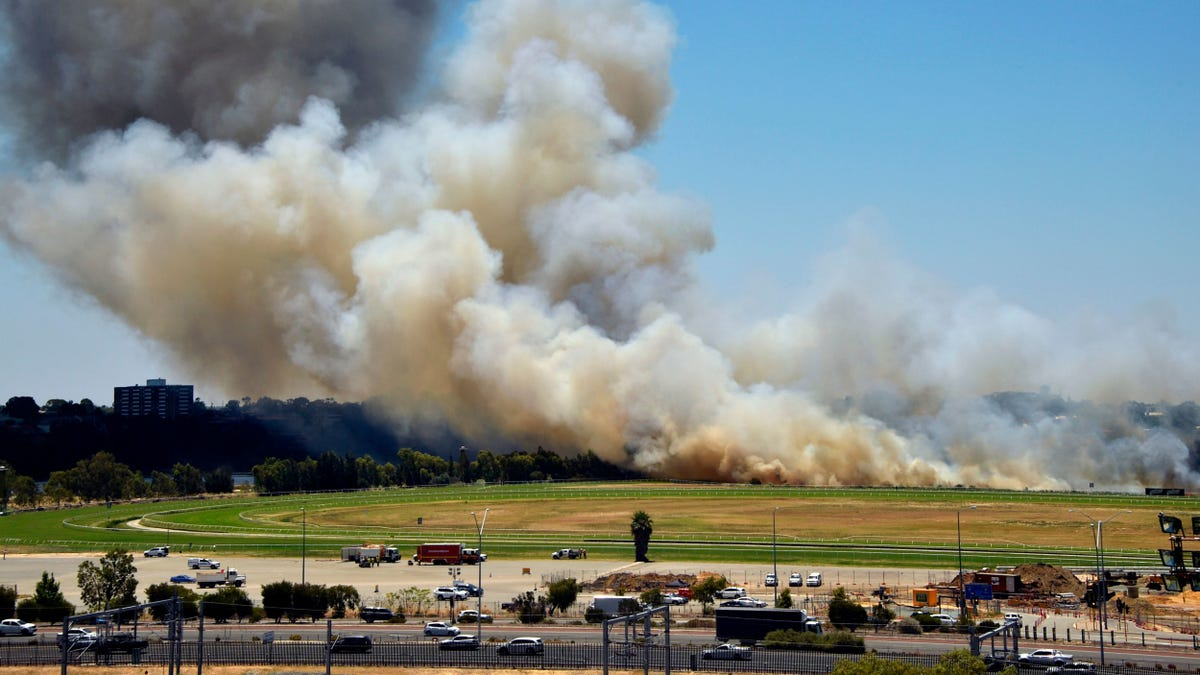 Great, Now Australia's Bushfires Are Fueling Climate Change