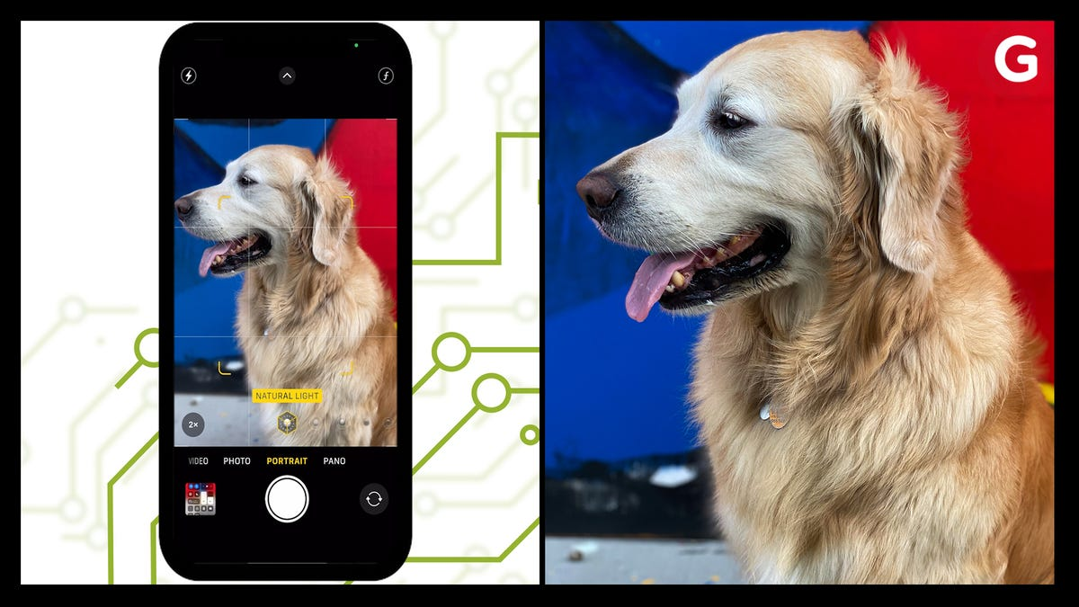 How to Take the Best Photos On Your iPhone
