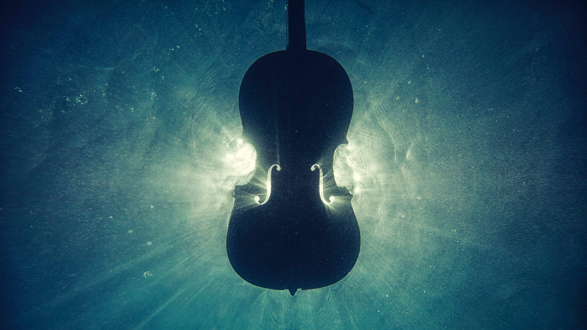 The Sweet Sound Of Music.. - cover
