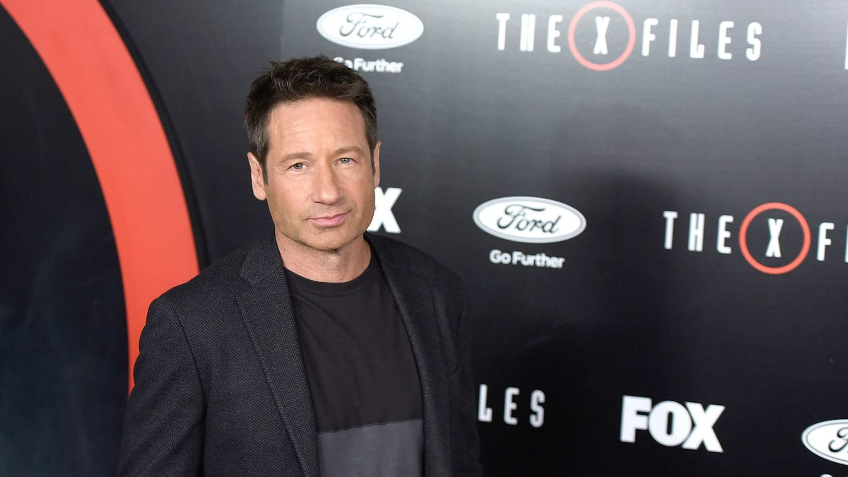 X-Files Star David Duchovny Admits He's Not a Conspiracy Theory Junkie
