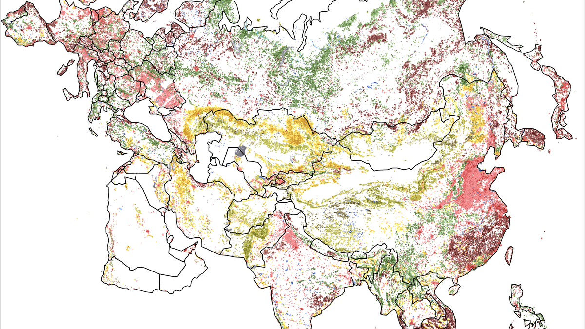 Colorful Maps Show How We've Transformed Earth's Surface Over the Past 25 Years