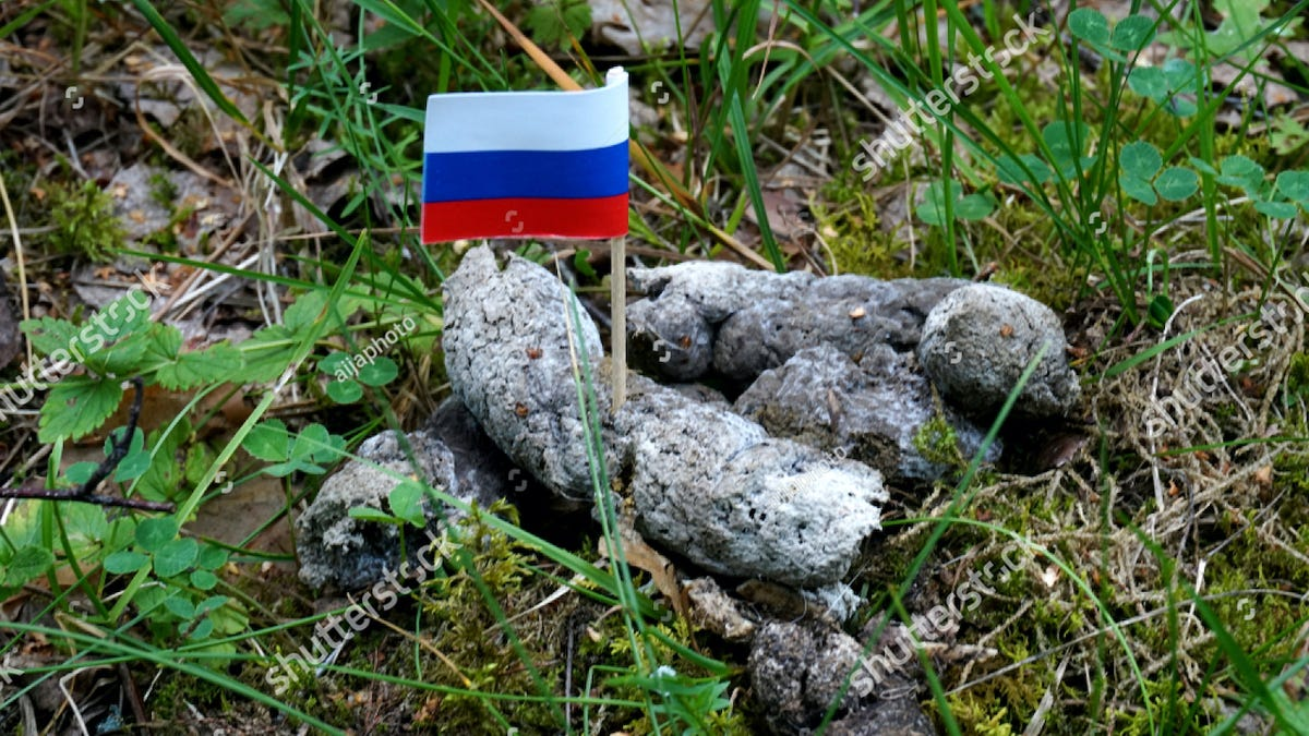 Russia Blocks Shutterstock Website Over Photos of Russian Flag in Dogshit