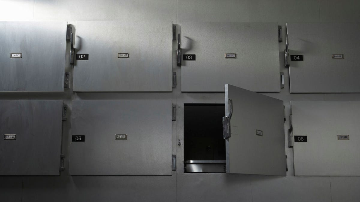7 Places You HAVE To Go After You Die - the onion