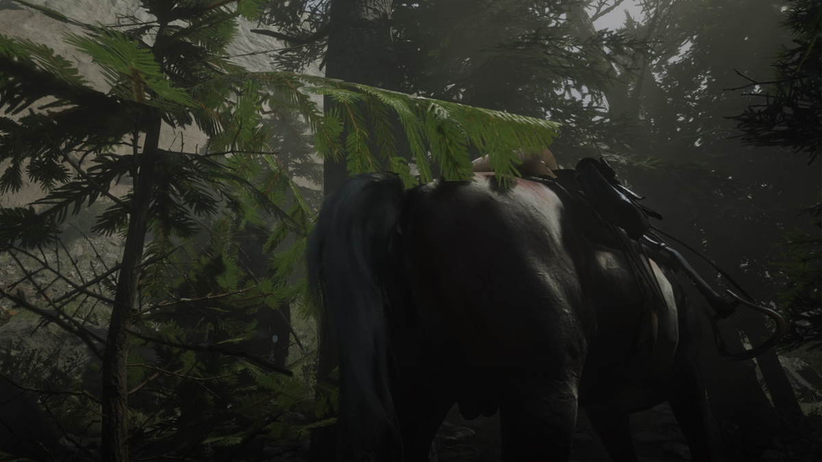 I Think My Horse In Red Dead Online Is Pooping Too Much