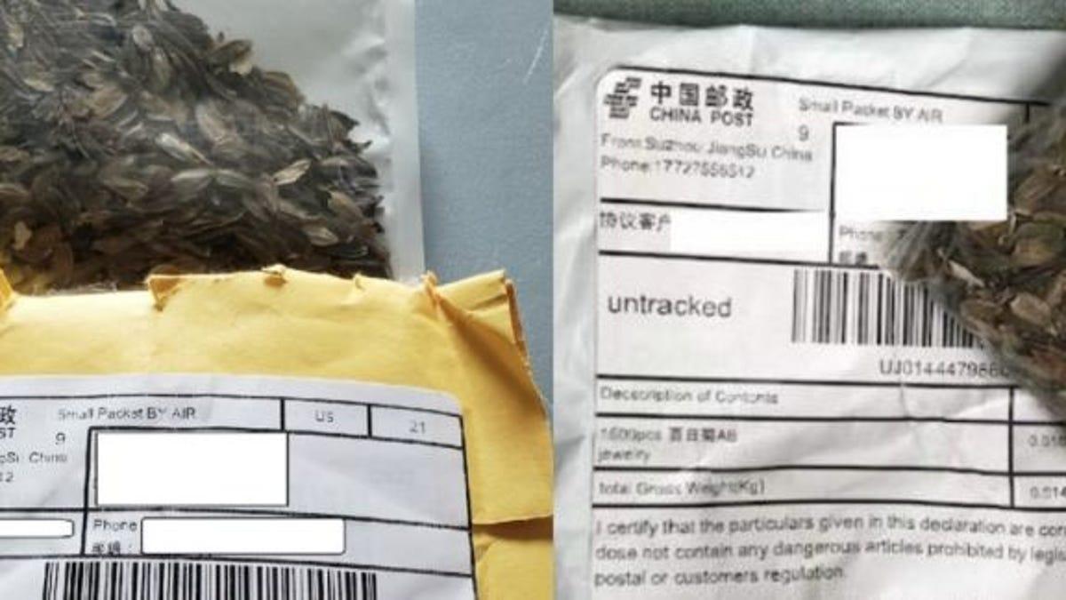 Estados Unidos identifica las misteriosas semillas enviadas de China