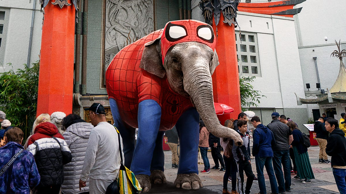 Indian Elephant Forced To Busk On Hollywood Boulevard After Los Angeles Bans Exotic Animal Performers - the onion