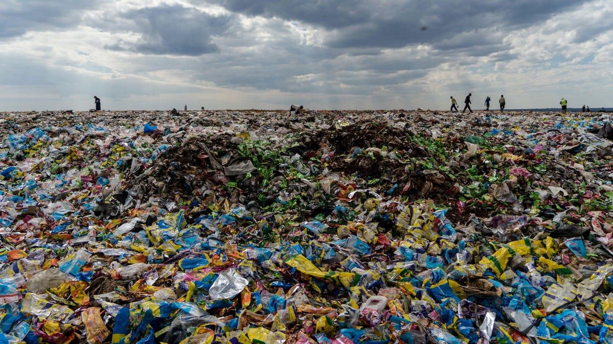 Sustainable Development  - cover