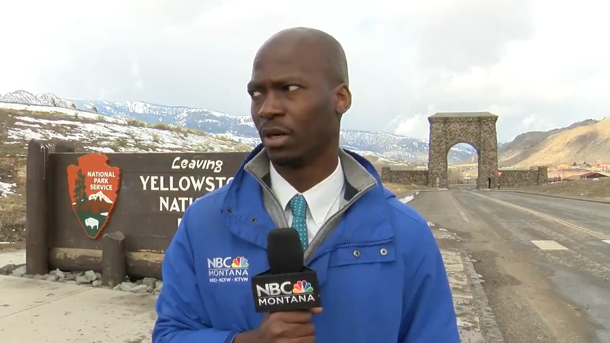 Reporter social distances himself the hell away from a bunch of big-ass bison