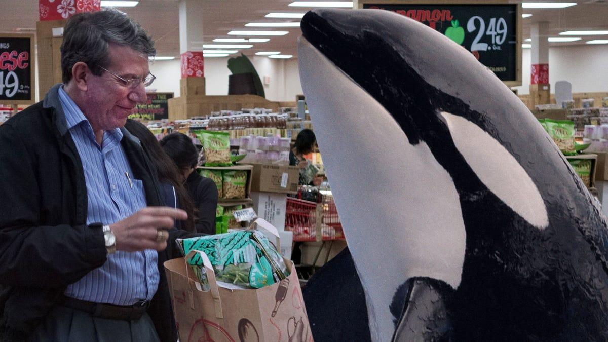 Furloughed SeaWorld Orca Mencoba Untuk Membuat Ujung Bertemu Dengan Mengambil Trader Joe Shift