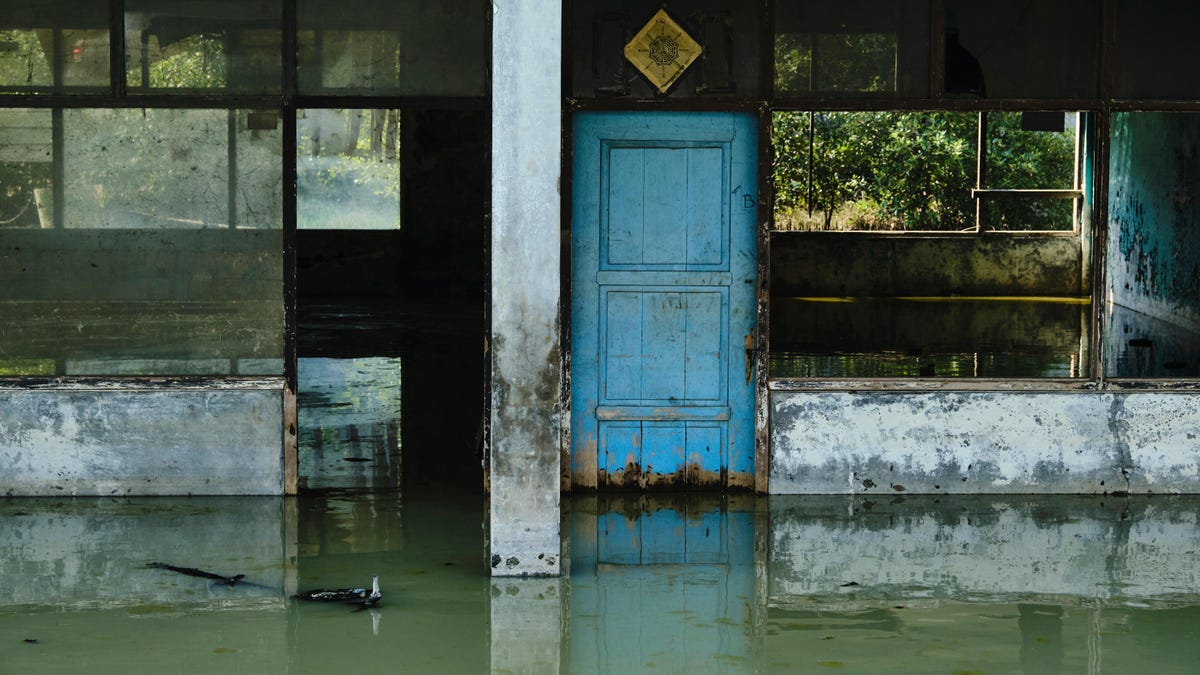 The Ground Is Literally Sinking, Study Shows