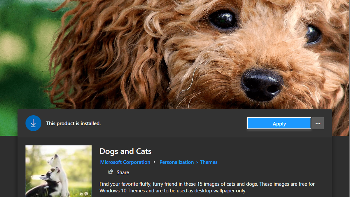 Hack Your Pets Into Microsoft's New 'Dogs and Cats' Windows Theme