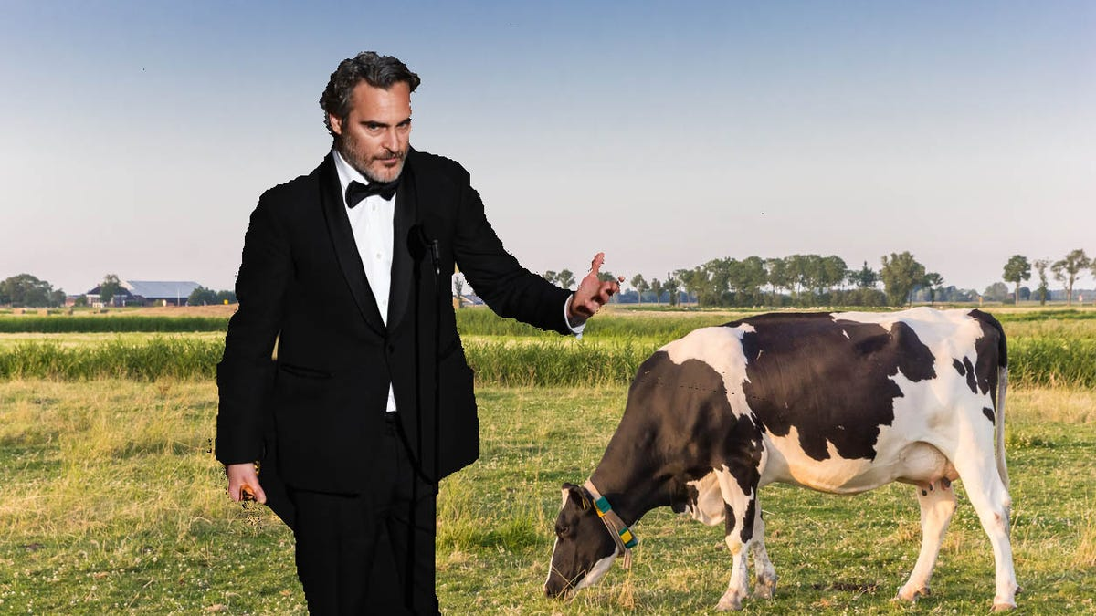Joaquin Phoenix reinforces Oscar speech by rescuing cow from slaughter [Updated]