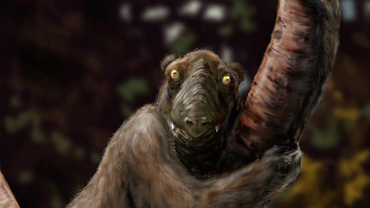 Weird Extinct Animals 1