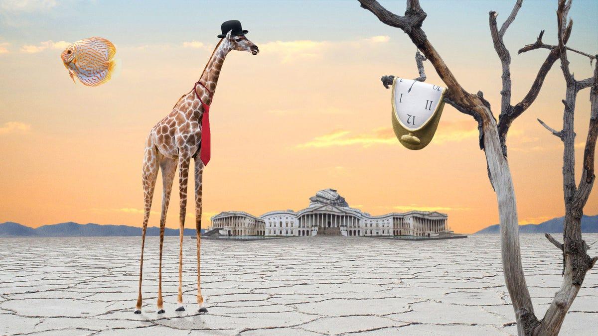 Schmelzen Giraffe Kongressabgeordneter Warnt Anklage Ablenken Von Surreal Fragen