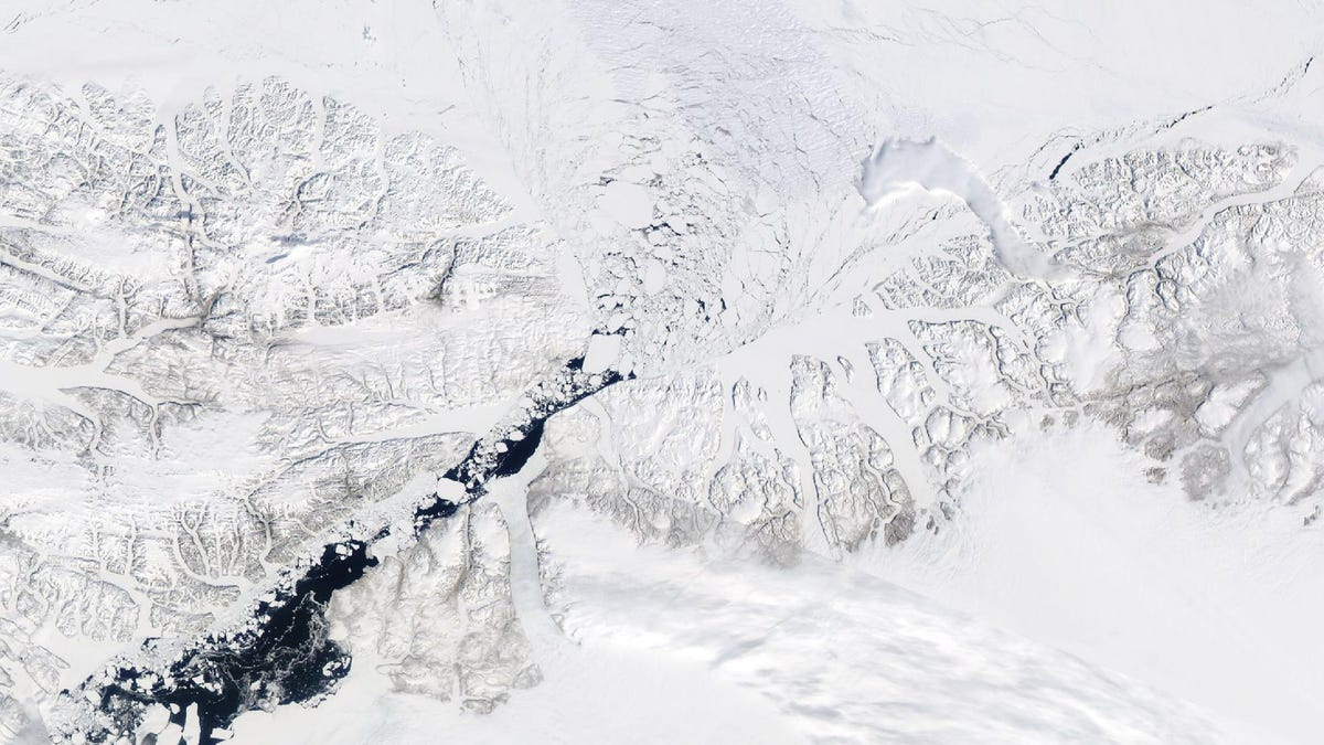 The Gateway Protecting the Arctic's Oldest Sea Ice Has Collapsed Months Ahead of Schedule