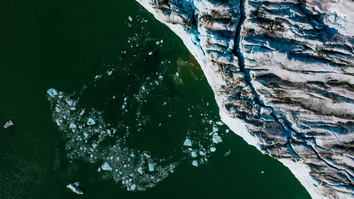 The Arctic Is Undergoing Changes Scientists 'Never Expected Would Happen This Soon'