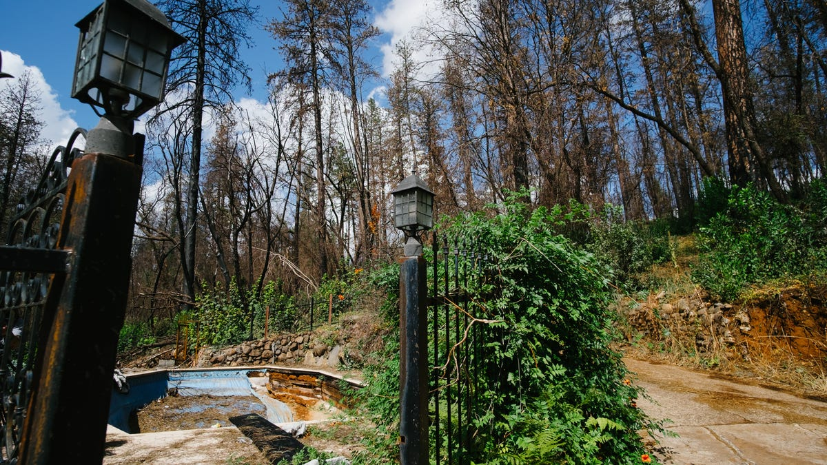 A Year After Paradise Burned, What Comes Next Is Still a Mystery