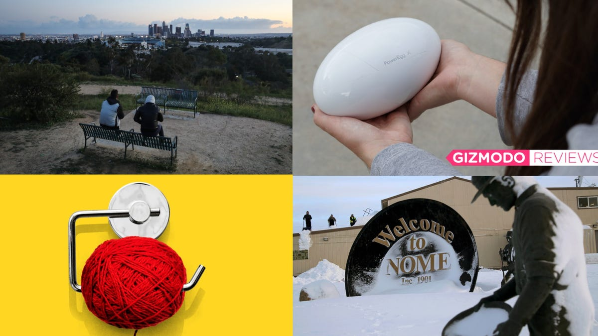 Cocaine Hippos, A New Mexico Raptor, and One Weird Cat: Best Gizmodo Stories of the Week
