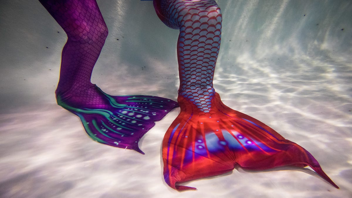 Mermaid Sex: Let Us Consider All the Ways