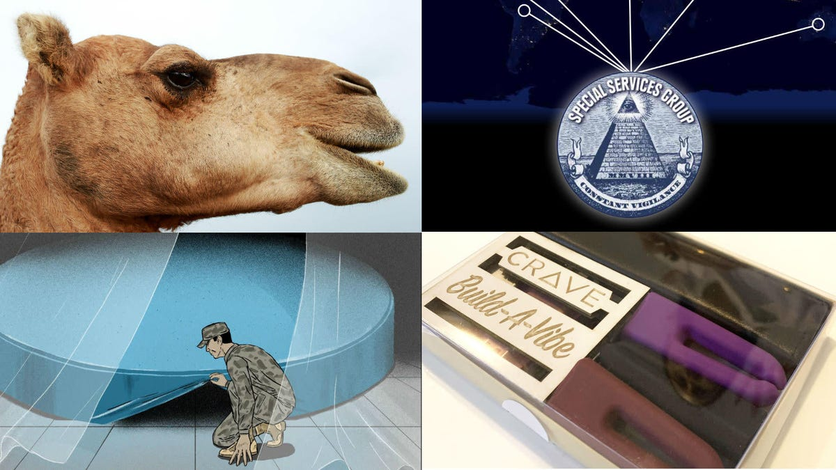 Faux-Pork, Feral Camels, Police Dogs, and Sex Tech: Best Gizmodo Stories of the Week