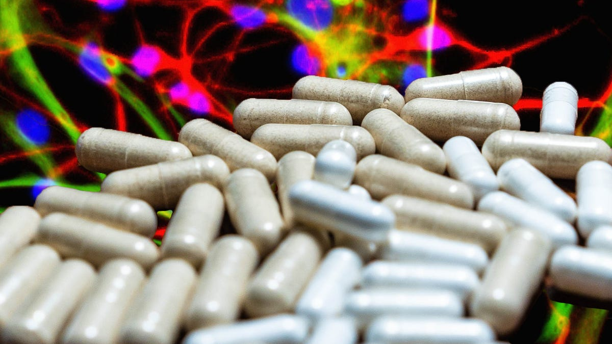 'Brain-Boosting' Supplements Are Full of Unapproved, Untested Drugs, Study Finds