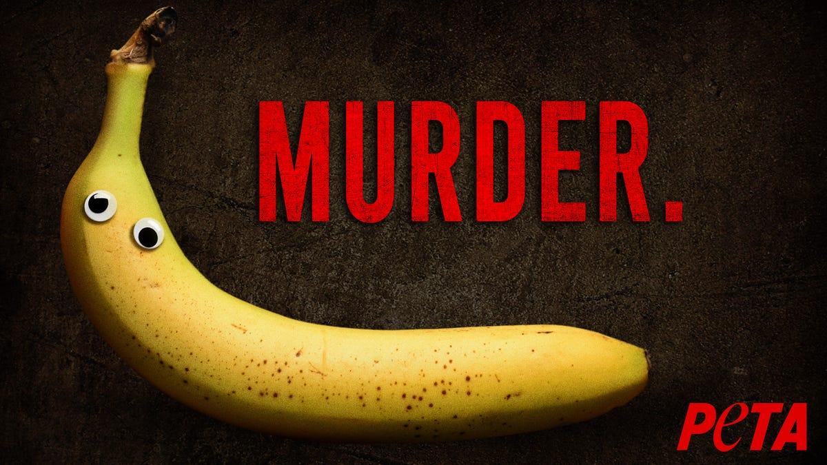 Neue Ausgehängt PETA-Anzeige Warnt, Sobald Sie die Kulleraugen Auf Eine Banane, Es zu Essen Ist Mord