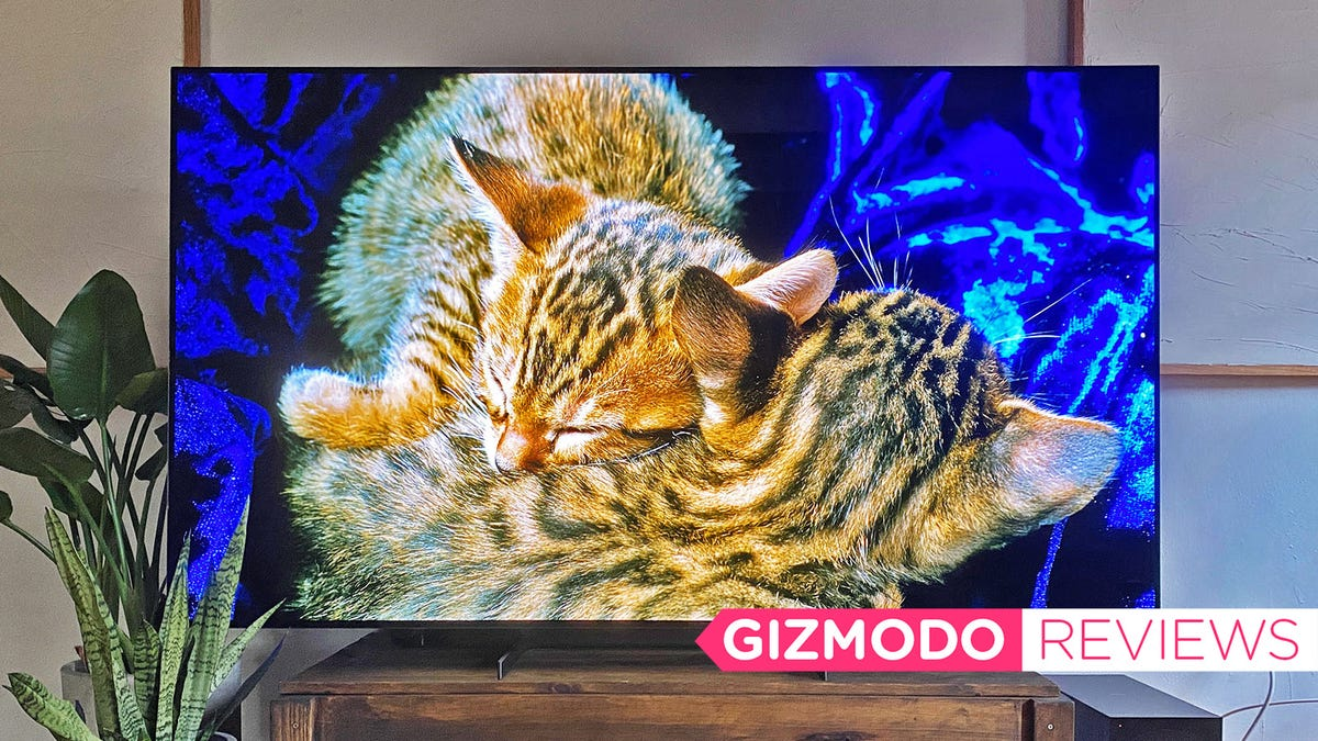 I Will Be Forever Ruined by This Incredible 8K OLED—That Also Costs $20,000
