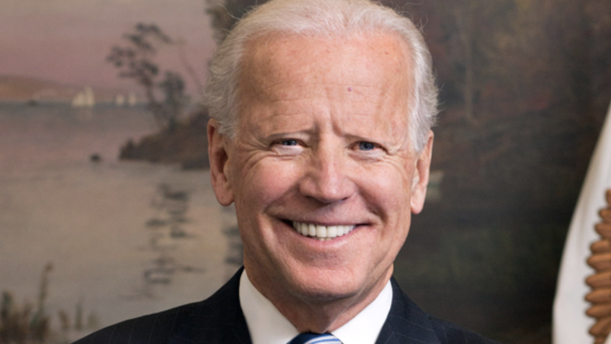 Asking the Tough Questions: Here's What All the 2020 Democrats Would Look Like If They Had No Eyebrows