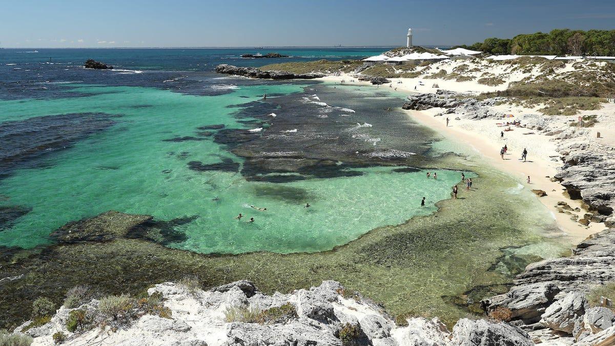 Australia pone en cuarentena a 800 ciudadanos en una isla paradisiaca llena de quokkas